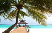 Spread of Bogus Holiday Villa Websites Prompts Warning
